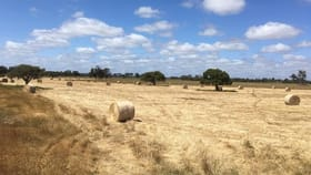 Rural / Farming commercial property for sale at Lot 10 Railway Road Waterloo WA 6228