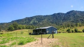 Rural / Farming commercial property for sale at 19 Pittionis Road Netherdale QLD 4756