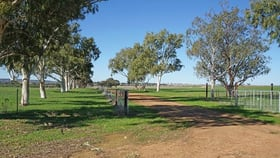 Rural / Farming commercial property for sale at 2947 Prices Road Badgingarra WA 6521