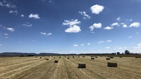 Rural / Farming commercial property for sale at 60 Cotic Road Kairi QLD 4872
