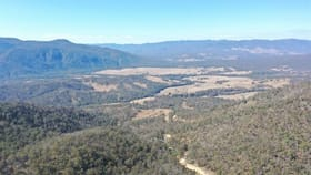 Rural / Farming commercial property for sale at 2478 BILLIRIMBA RD Tenterfield NSW 2372
