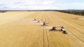 Rural / Farming commercial property for sale at Corinella Group Portfolio, Victoria & South Australia Stawell VIC 3380