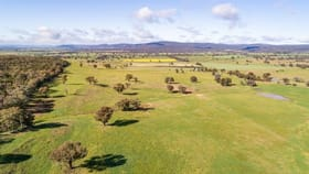 Rural / Farming commercial property for sale at Jayton North' Fragar Road Cowra NSW 2794
