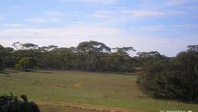 Rural / Farming commercial property sold at 19 Goondooloo Road Bowhill SA 5238