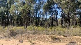 Rural / Farming commercial property for sale at 1110 MANCERS LANE Binnaway NSW 2395