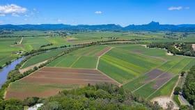 Rural / Farming commercial property for sale at 604 Dulguigan Road Dulguigan NSW 2484