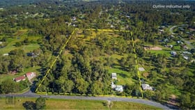 Rural / Farming commercial property for sale at 1-53 Bluff Road Cedar Vale QLD 4285