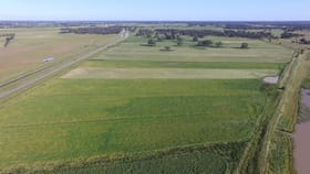 Rural / Farming commercial property sold at 8500 Murray Valley Hwy Echuca VIC 3564