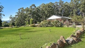 Rural / Farming commercial property for sale at 3075 Colac-Lavers Hill Road Gellibrand VIC 3239