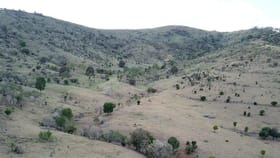 Rural / Farming commercial property for sale at 4 Lots Gospel Hall & Lawgalls Roads Dallarnil QLD 4621