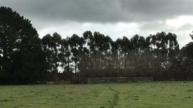 Rural / Farming commercial property for sale at - Port Fairy Rd Hamilton VIC 3300