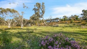 Rural / Farming commercial property for sale at 572 Wallaces Gap Road Braidwood NSW 2622