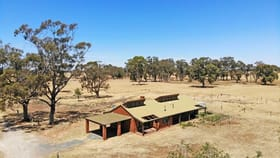 Rural / Farming commercial property for sale at 335 Andrews Road Kyabram South VIC 3620