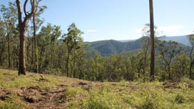 Rural / Farming commercial property for sale at Lot 55 Billirimba Road Tenterfield NSW 2372