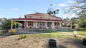 Rural / Farming commercial property for sale at 1508 Plains Road Pinery SA 5460