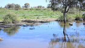 Rural / Farming commercial property for sale at 'Bennetts' Off Sandy Camp Road Quambone NSW 2831