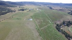 Rural / Farming commercial property for sale at 700 Yarraman Road Wybong NSW 2333