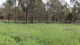 Rural / Farming commercial property sold at Lot 216 Wooden Hut Road Wattle Grove QLD 4610