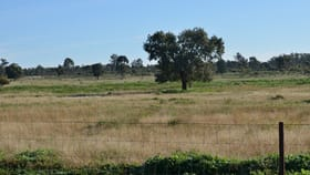 Rural / Farming commercial property for sale at 1 ?Hippy Valley? Condobolin NSW 2877
