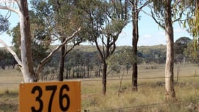 Rural / Farming commercial property for sale at 376 Back Creek  Road Gundaroo NSW 2620