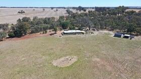 Rural / Farming commercial property for sale at 7939 BLACKWOOD ROAD Kojonup WA 6395