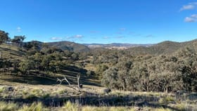Rural / Farming commercial property for sale at 1033 Hill End Road Crudine NSW 2795