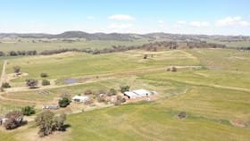 Rural / Farming commercial property for sale at 8149 Burrendong Way Wellington NSW 2820