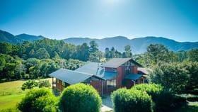 Rural / Farming commercial property for sale at 934 Promised Land Road Bellingen NSW 2454