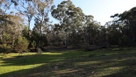 Rural / Farming commercial property for sale at 262, 2401 Lumley Rd Lake Bathurst NSW 2580