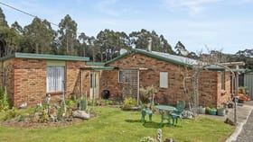 Rural / Farming commercial property for sale at 9 Choveaux Road Henrietta TAS 7325