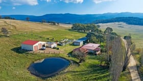 Rural / Farming commercial property for sale at 467 Kain Cross Road Braidwood NSW 2622