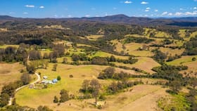Rural / Farming commercial property for sale at 204 Beech Road Elands NSW 2429