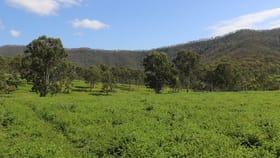 Rural / Farming commercial property for sale at Lot 2 Upper Allan Creek Road Bromelton QLD 4285