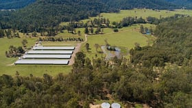 Rural / Farming commercial property for sale at 2050 Upper Mongogarie Road Upper Mongogarie NSW 2470
