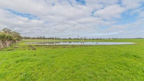 Rural / Farming commercial property for sale at 31 Queensferry Jetty Rd Corinella VIC 3984