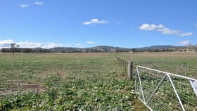 Rural / Farming commercial property for sale at 763 Warrah Creek Rd, 'Springfield' Willow Tree NSW 2339