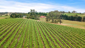 Rural / Farming commercial property for sale at 61 Frenchs Road Springton SA 5235