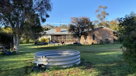 Rural / Farming commercial property for sale at 43 Wilmar Lane Forbes NSW 2871
