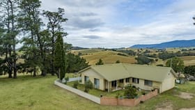 Rural / Farming commercial property for sale at 227-277 Alcock Collins Road Bemboka NSW 2550