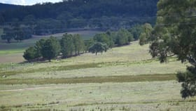 Rural / Farming commercial property for sale at 36 & 37 Marian Vale Road Boxers Creek NSW 2580