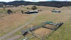 Rural / Farming commercial property for sale at 1270 Towrang  Road Greenwich Park NSW 2580