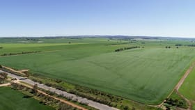 Rural / Farming commercial property for sale at 132 Flavel Road Gladstone SA 5473