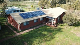 Rural / Farming commercial property for sale at 478 Williams Road Strathmerton VIC 3641