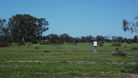 Rural / Farming commercial property for sale at 520 River Road Murrabit West VIC 3579