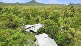 Rural / Farming commercial property for sale at 991 Leafgold Weir Road Dimbulah QLD 4872
