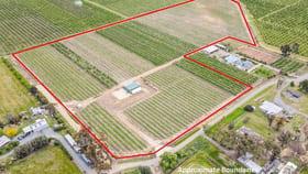 Rural / Farming commercial property for sale at 170 Prentice Road Orrvale VIC 3631