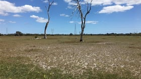 Rural / Farming commercial property for sale at Nambeelup WA 6207