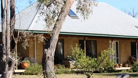Rural / Farming commercial property for sale at 1929 O'Connell Road Bathurst NSW 2795