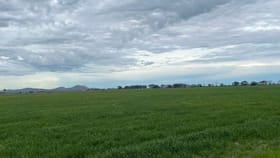 Rural / Farming commercial property for sale at 01 Churches Road Leitchville VIC 3567