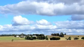 Rural / Farming commercial property for sale at 81 Corinda Drive Lower Belford NSW 2335